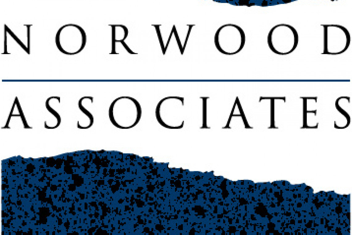 Norwood Associates BLUE logo